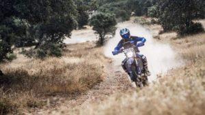 "Tiago Santos, Baja TT Dehesa Extremadura: ""Estou no caminho certo"" thumbnail"